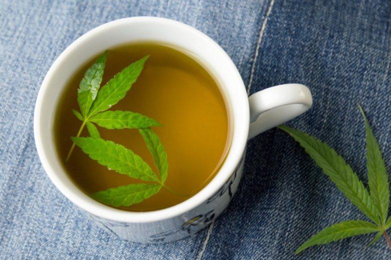 Herbata z konopi